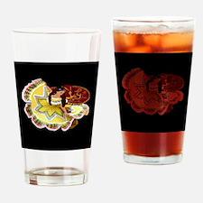 quinceanera_sunflower_black_notext_ Drinking Glass