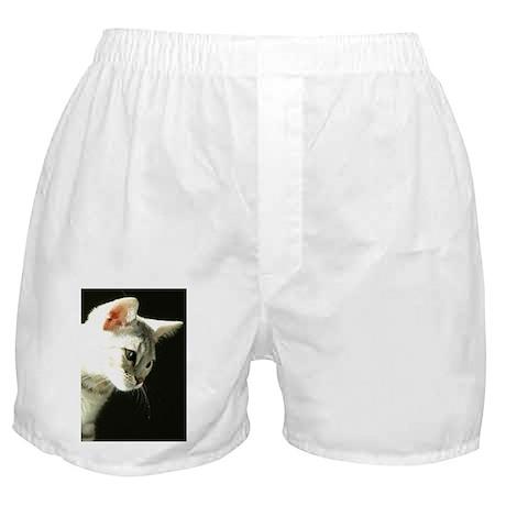 IMG_2714_5x8 Boxer Shorts