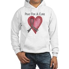 Pray for a cure 2 Hoodie