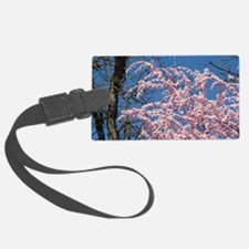 Pink Blossoms 103M Spring Tree B Luggage Tag