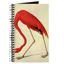 audubon 4 Journal