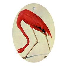 audubon 4 Oval Ornament