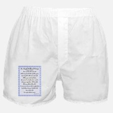 An Angel without wings BLUE Boxer Shorts