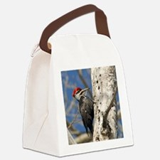 11x11_pillow 2 Canvas Lunch Bag