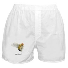 got ether? Boxer Shorts