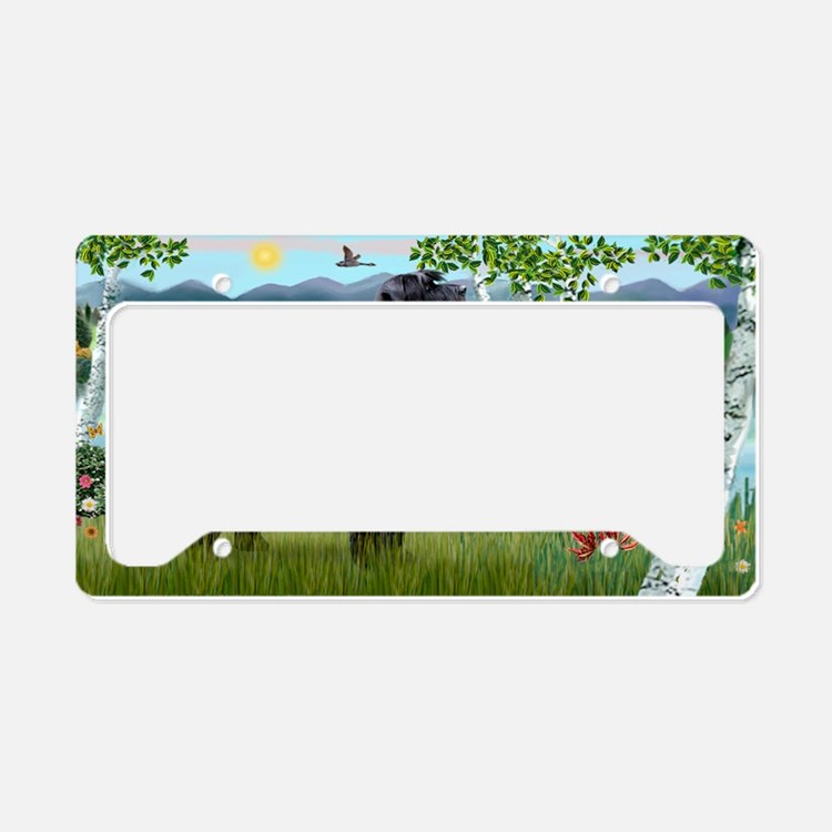 LIC-Birches-Giant black Schna License Plate Holder
