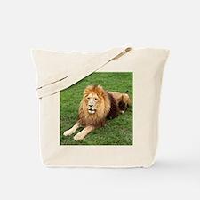 Cameron 1 Tote Bag