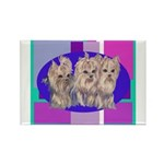3 Yorkie Puppies Rectangle Magnet (100 pack)
