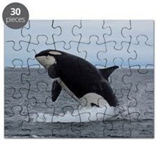 IMG_2447 - Copy Puzzle
