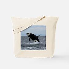 IMG_2447 - Copy Tote Bag