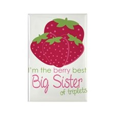 Berry Sister Triplets Rectangle Magnet