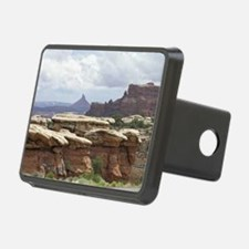 Canyonlands Hitch Cover