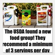 "USDAfoodGroup Square Car Magnet 3"" x 3"""