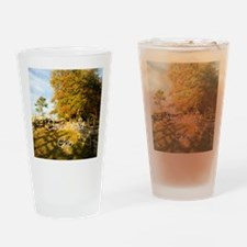 cumberlandgapsq Drinking Glass
