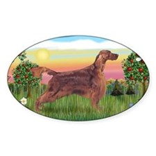 LIC-BriightCountry-IrishSetter Decal