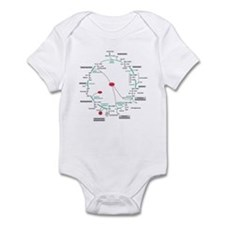 Kreb's Cycle Infant Bodysuit