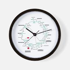 Kreb's Cycle Wall Clock