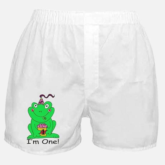Froggie BD-1 copy Boxer Shorts