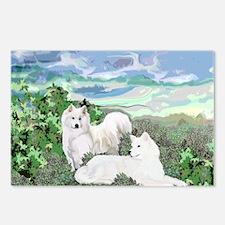 samoyed blanket Postcards (Package of 8)