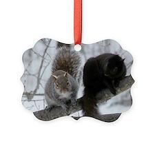 Squirrels Chatting Ornament