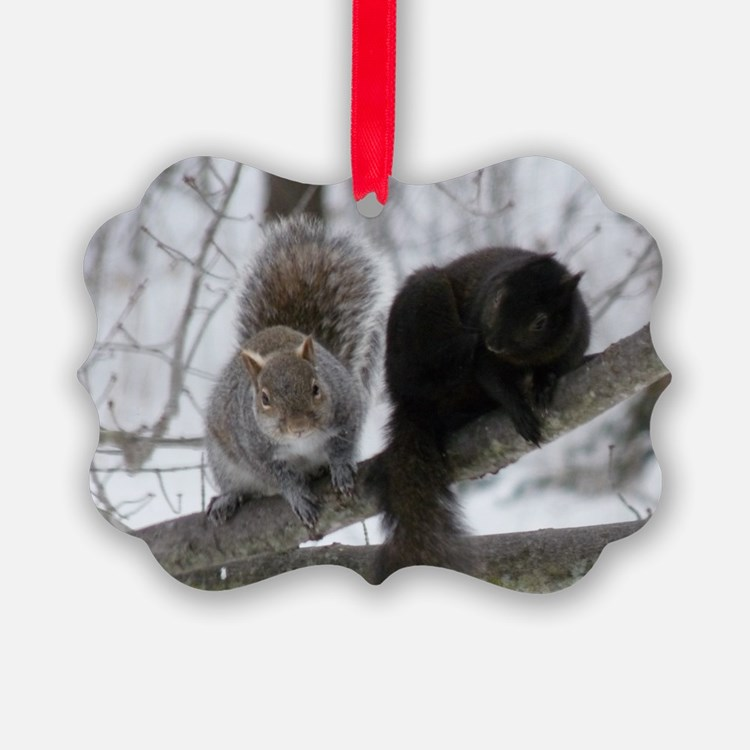 Squirrels Chatting Ornament