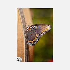 10-09-18_Tarara_Winery_DSC_4436 Rectangle Magnet