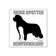 "IrishSpottedNewfoundland2 Square Sticker 3"" x 3"""