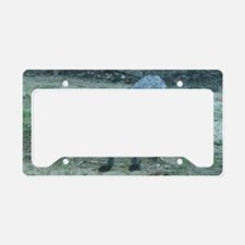 Fox12.125x6.125b License Plate Holder