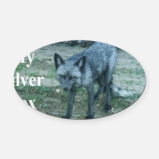 Fox12.125x6.125C Oval Car Magnet