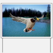 Mallard Duck Yard Sign