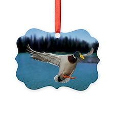 Mallard Duck Ornament