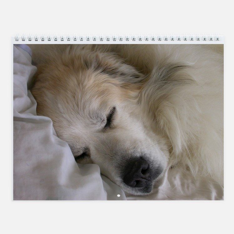 2016 Great Pyrenees Wall Calendar
