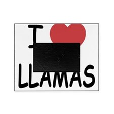 LLAMAS Picture Frame