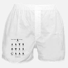 Token Skeptic Catology / Astrology Boxer Shorts