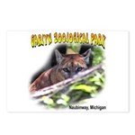 Cougar Postcards (Package of 8)