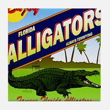 FLORIDA ALLIGATORS_STADIUM_BLANKET Tile Coaster
