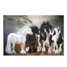 Stallions Postcards (Package of 8)