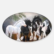 Stallions Decal