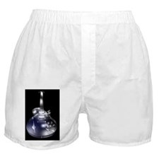 GlassGuitar2 Boxer Shorts