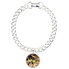IMG_0304 Cropped - Copy  Bracelet