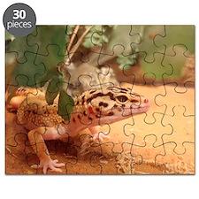 DSC07794 Puzzle