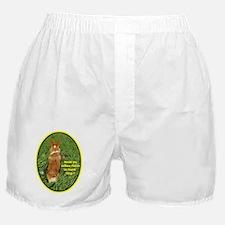 Easter Corgi Mercy Boxer Shorts