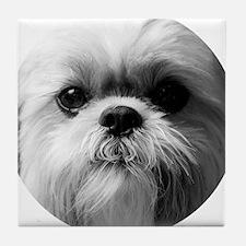 Shih Tzu Photo Tile Coaster