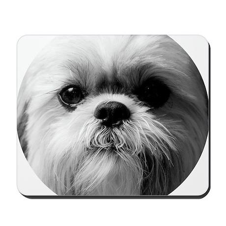 Shih Tzu Photo Mousepad