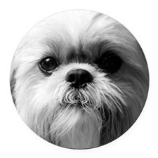 Shih Tzu Photo Round Car Magnet
