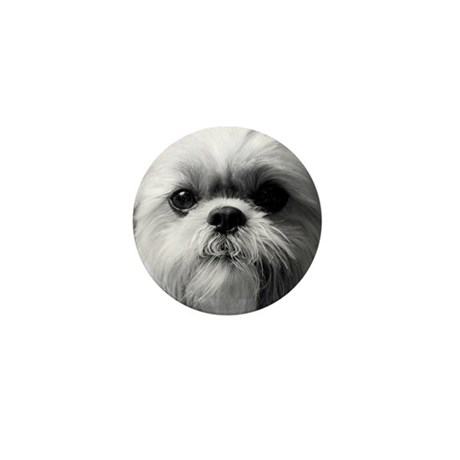 Shih Tzu Photo Mini Button