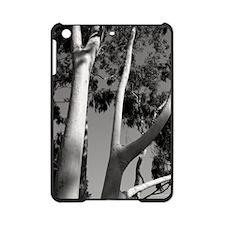 FD_SantaBarbaraEucalyptus16x20 iPad Mini Case