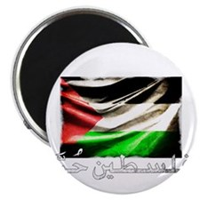 free-palestine-grunge Magnet