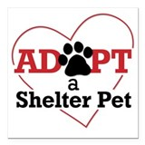 Adopt a shelter pet Square Car Magnets