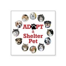 "Adopt a Shelter Pet Square Sticker 3"" x 3"""